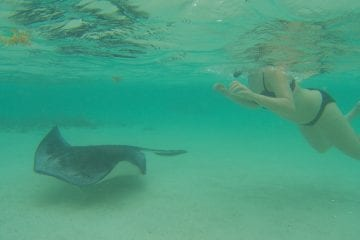 Vakantie Antigua Barbuda to do tips
