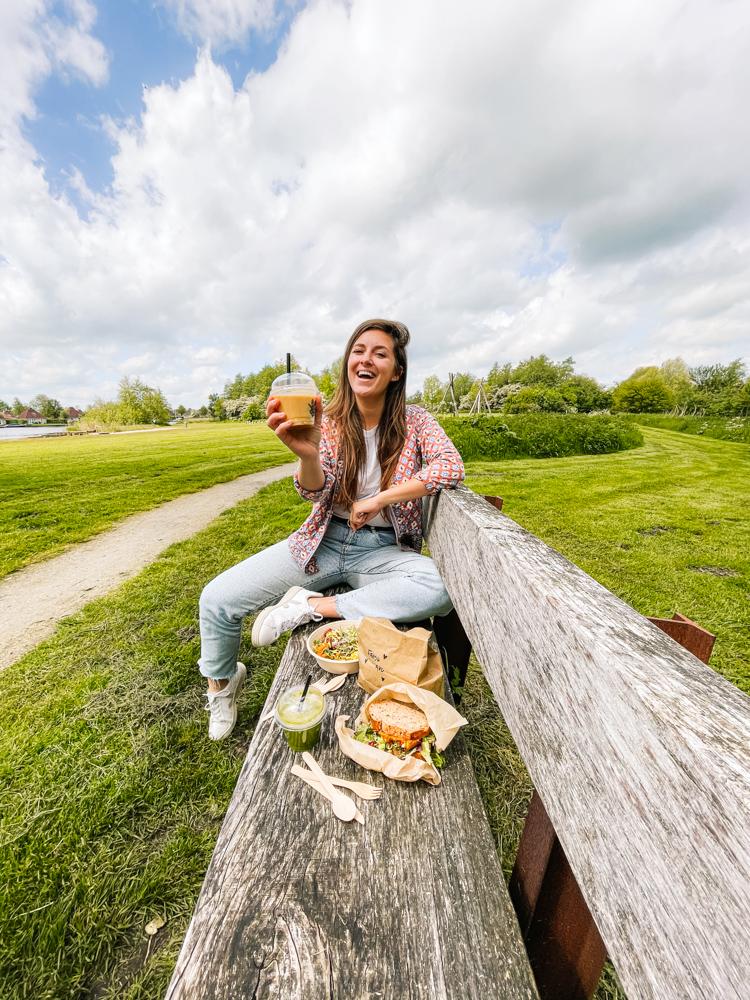 Varen in friesland picknicken