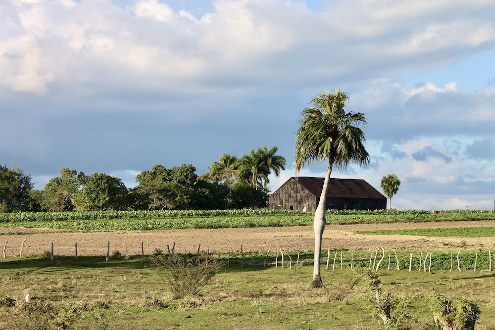 Viñales in Cuba