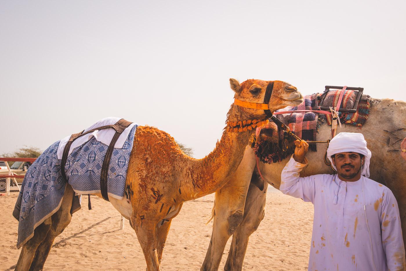 Waar ligt Oman_