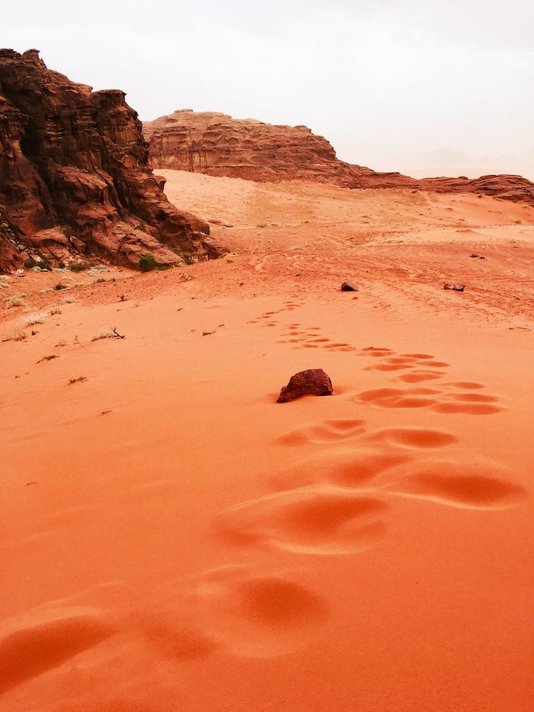 Wadi Rum woestijn zand