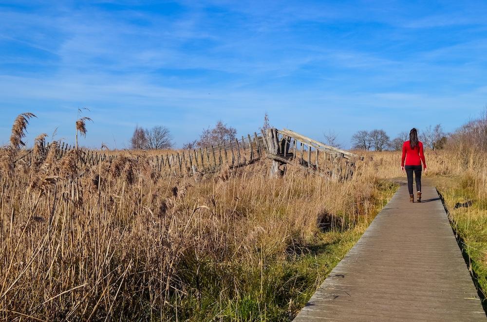 Wandelen Het Hageven belgisch limburg