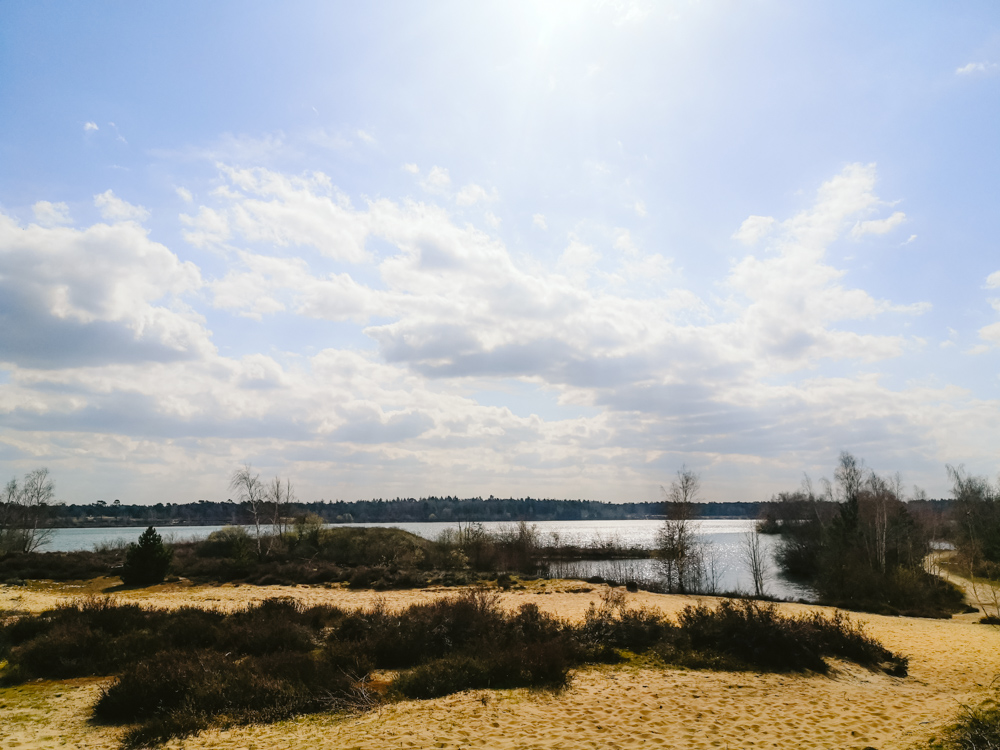 Wandelen langs het Reindersmeer Maasduinen limburg