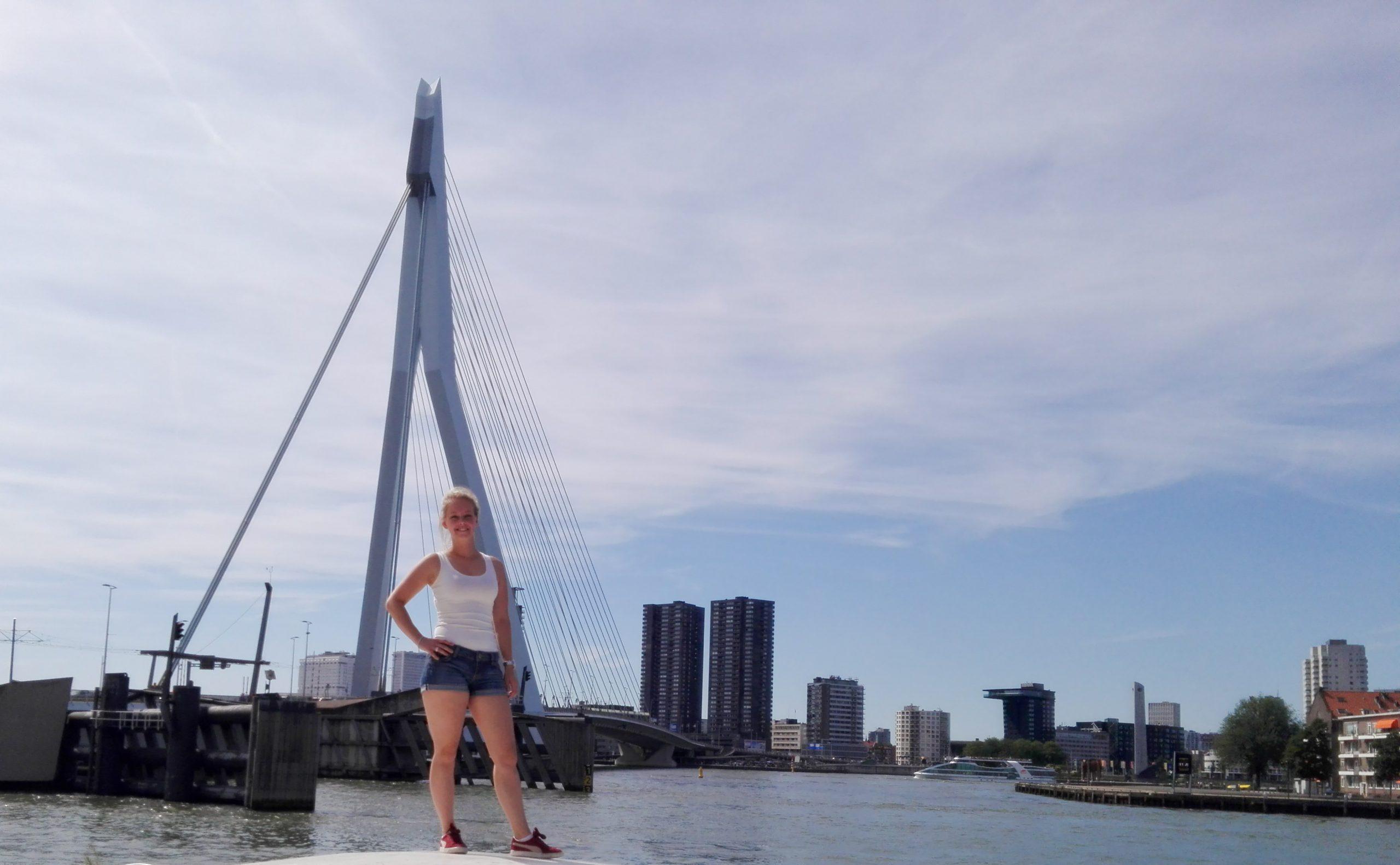Wat te doen Rotterdam, Erasmusbrug