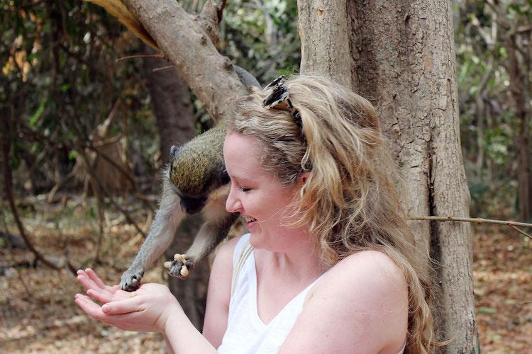 Wat te doen in Gambia Monkey Park voeren