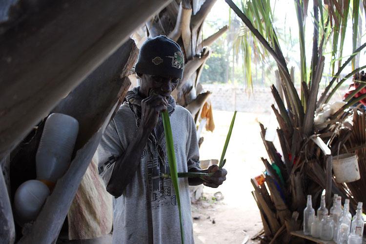 Wat te doen in Gambia Palmwijn