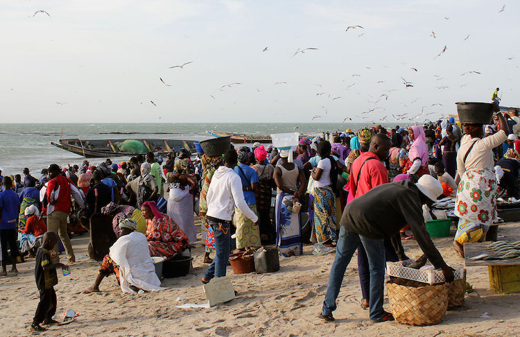 Wat te doen in Gambia Tanji-Fishing-Village-1
