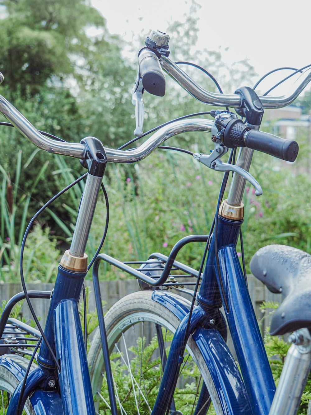 Wat te doen in Haarlem, fietsen