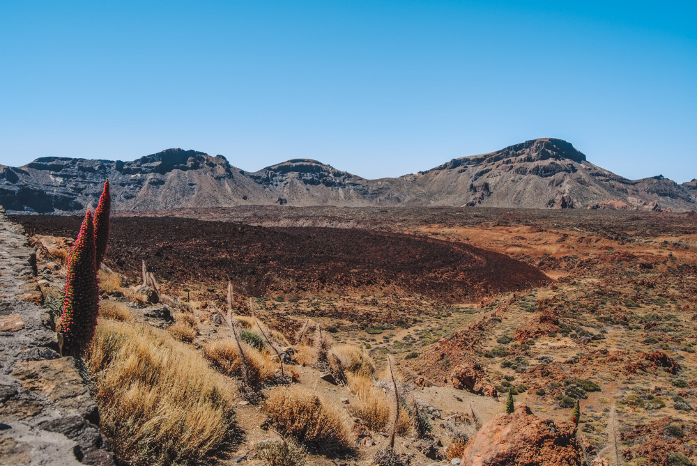 Wat te doen in Tenerife eiland