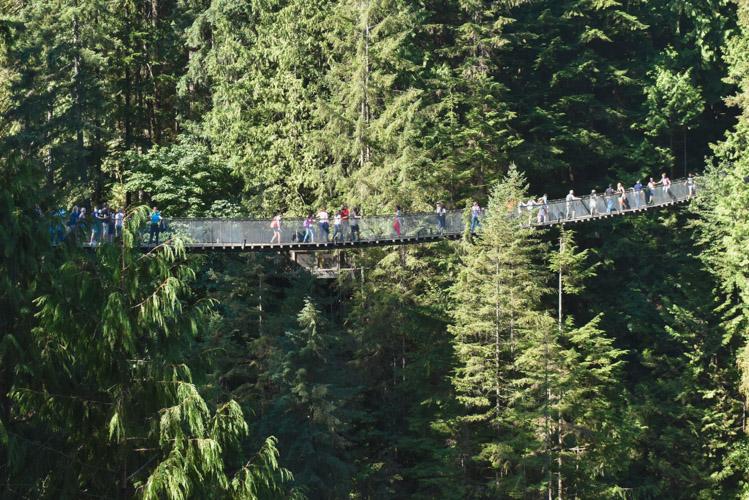 Wat te doen in Vancouver Suspension Bridge-2