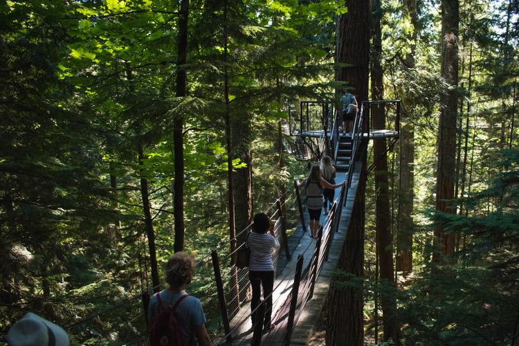 Wat te doen in Vancouver Suspension Bridge