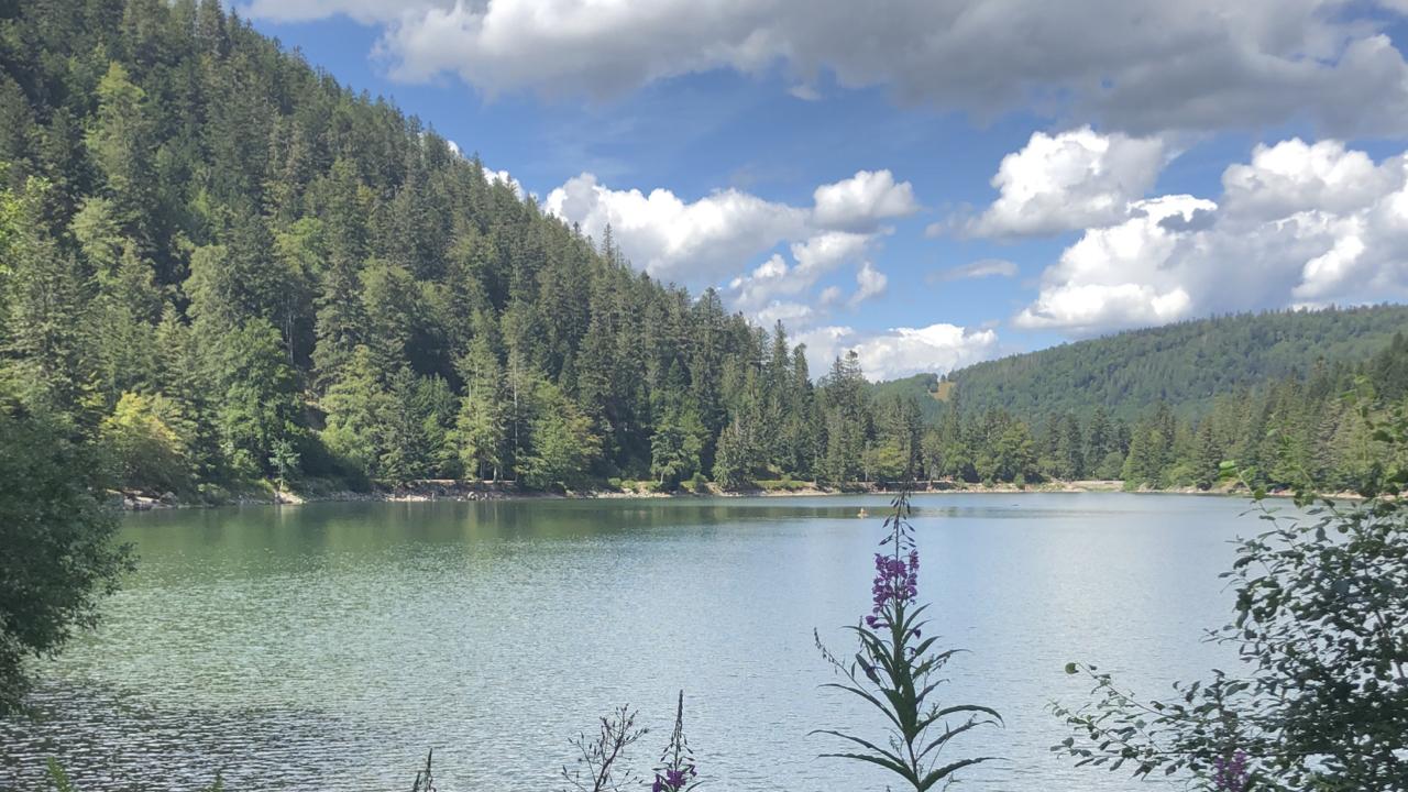 WeAreTravellers, bezienswaardigheden Vogezen, Lac des Corbeaux