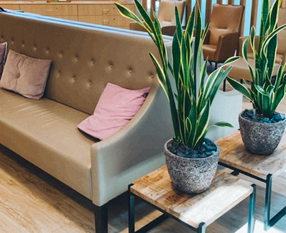 Wellness hotels Nederland tips thermae 2000