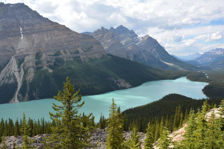 West Canada rondreis Peyto lake