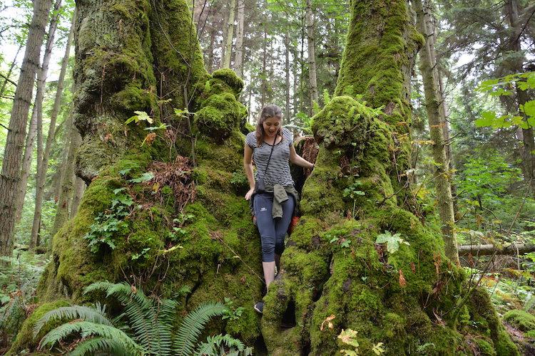 West Canada rondreis Vancouver natuur