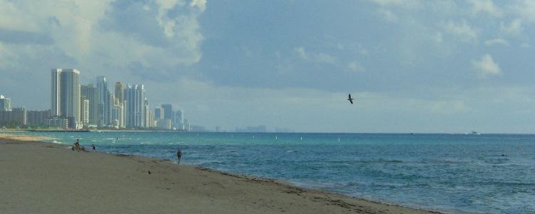 Wijken in Miami tips