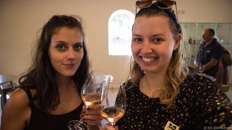 Wijnproeverij kaapstad wijnlanden tips