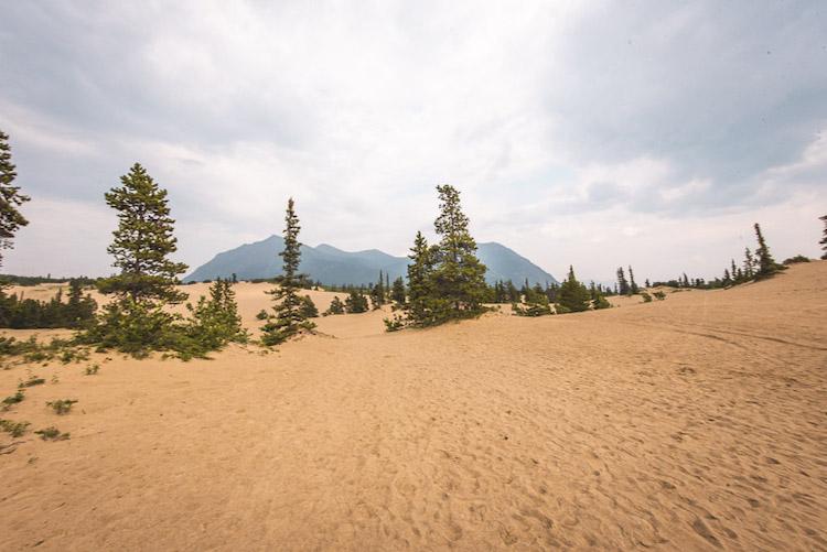 Yukon Canada kleinste woestijn ter wereld
