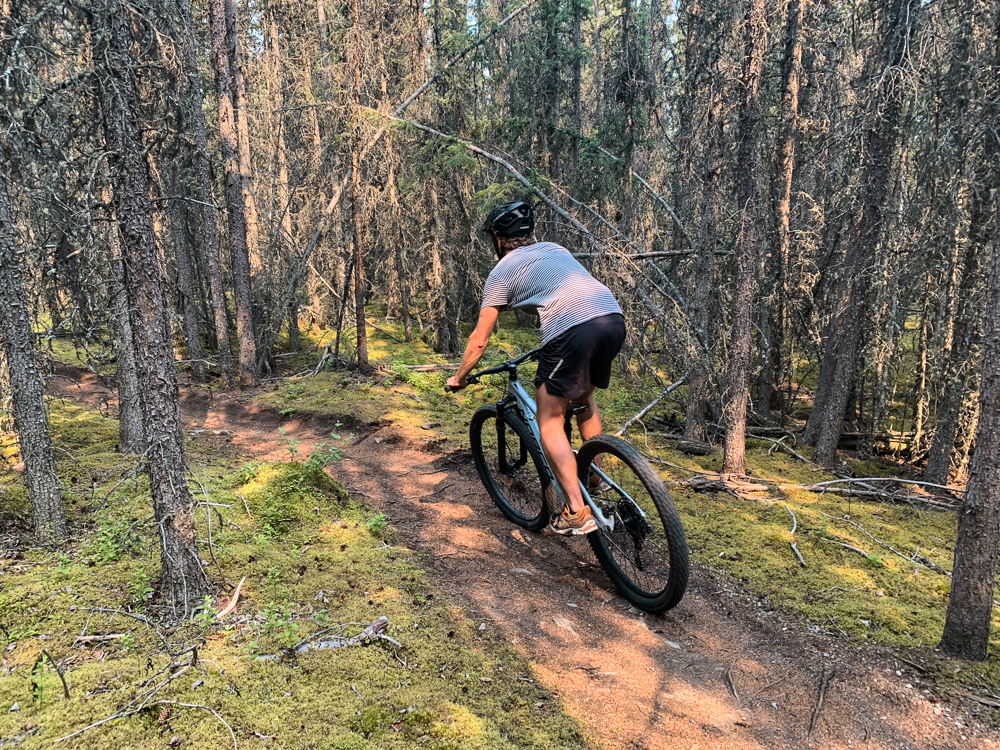 Yukon mountainbiken Carcross-2