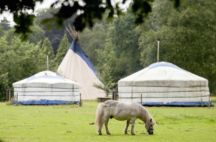 Yurt huren Nederland