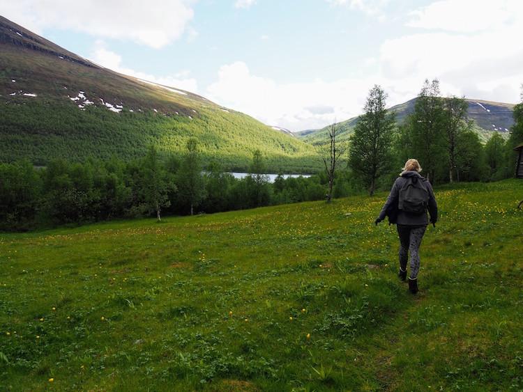 Zomer zweeds lapland hiken bij Ammernäs