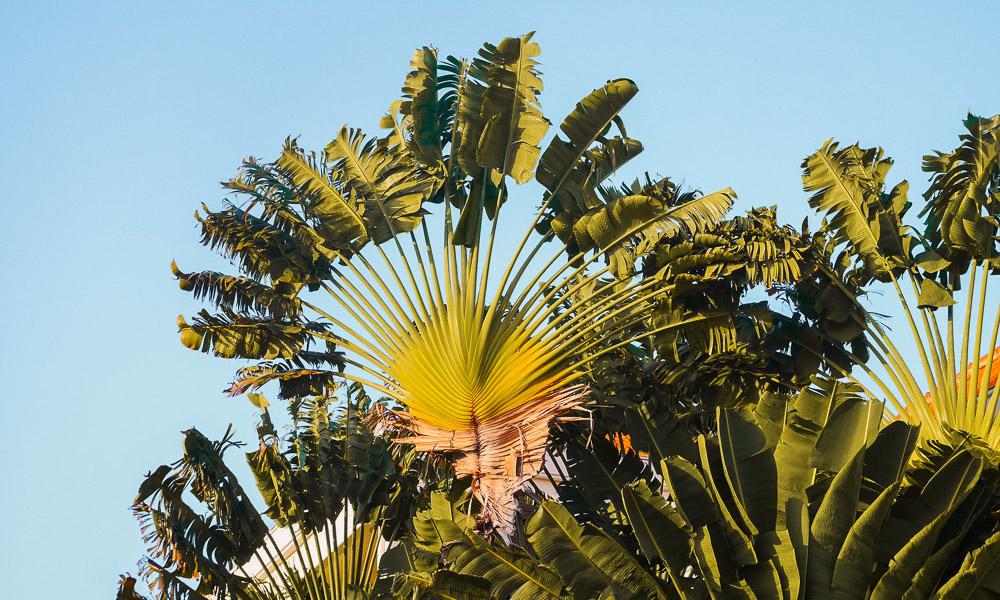 Zonvakantie april Kaapverdie