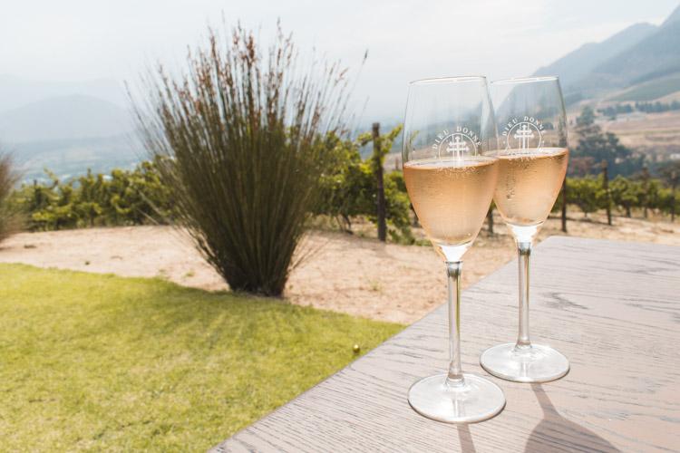 Zuid Afrika tips route stellenbosch