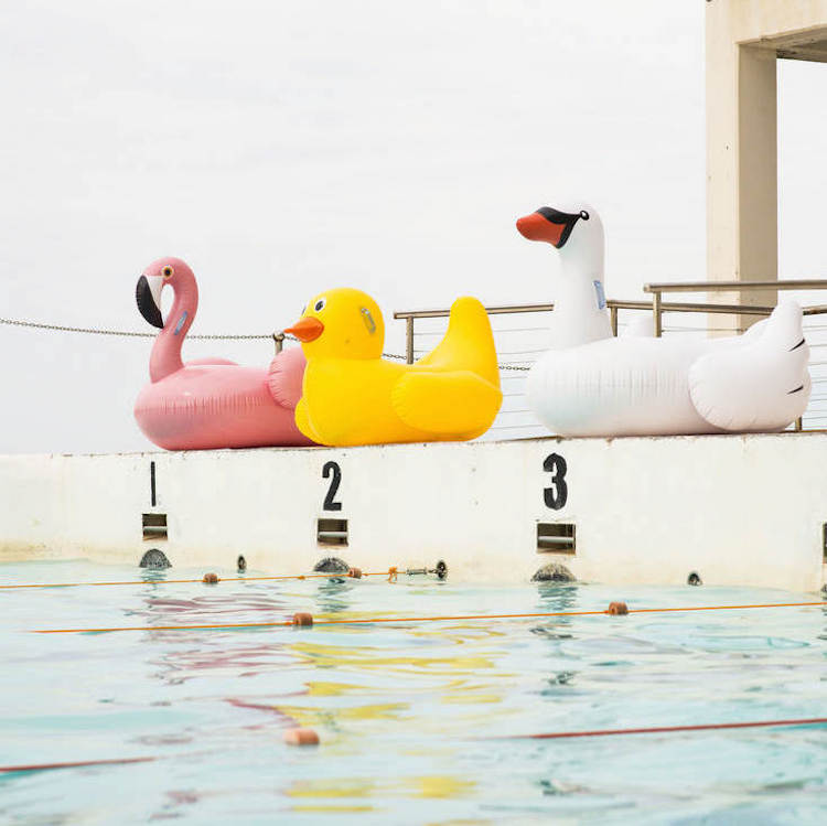 Zwembad speelgoed opblaasbare zwaan eend flamingo