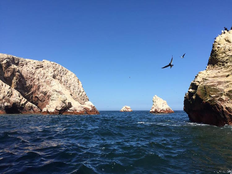 backpacken peru bolivia chili isla_ballestas_paracas