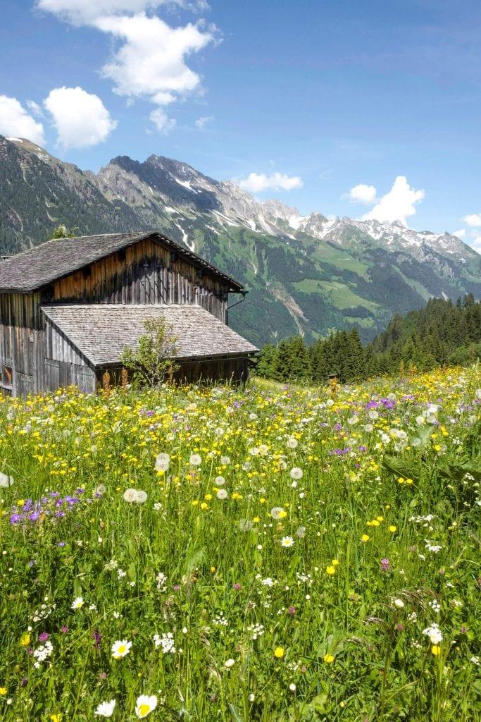 berghuisje zomervakantie oostenrijk achensee vorarlberg