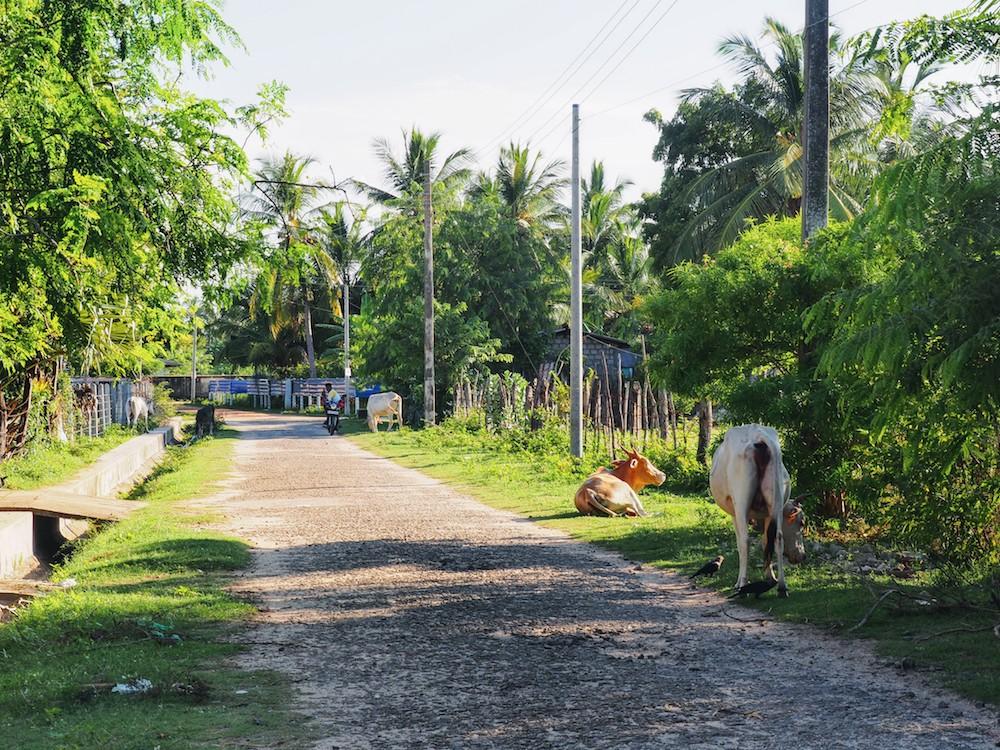 binnenland-Nilaveli-hidden-places-sri-lanka