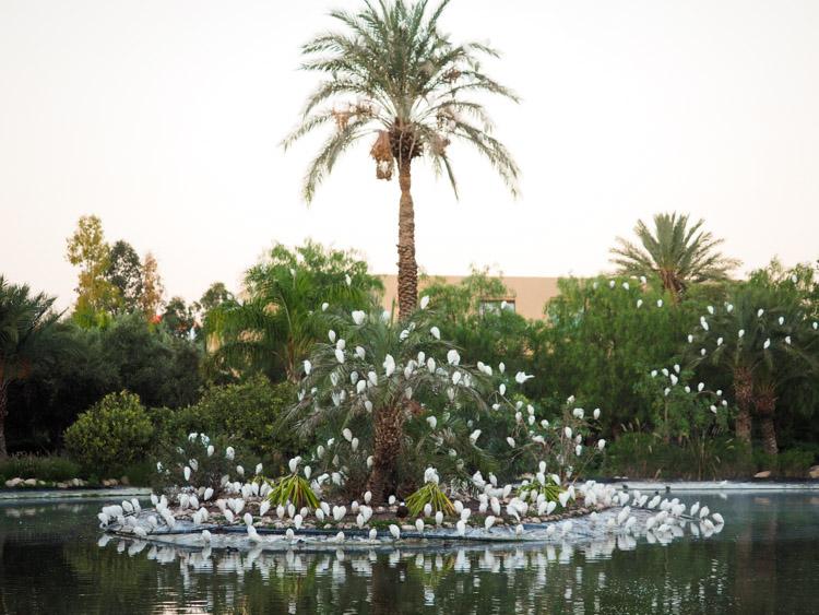 doen-in-marrakech-roadtrip