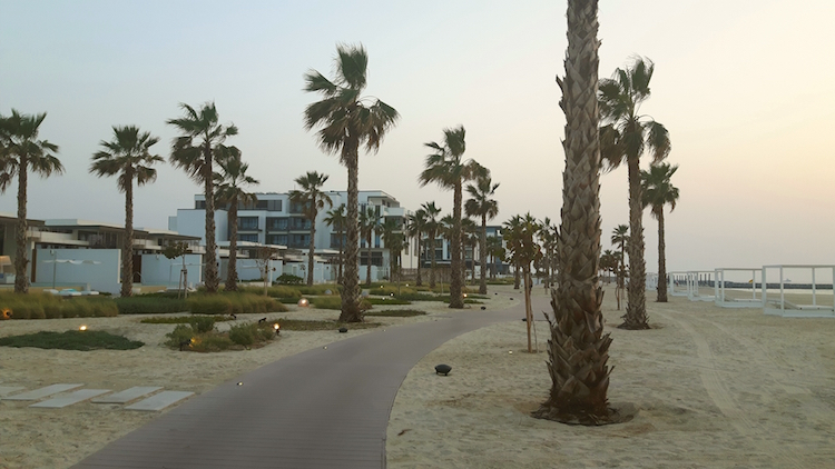 dubai luxe palmbomen strand