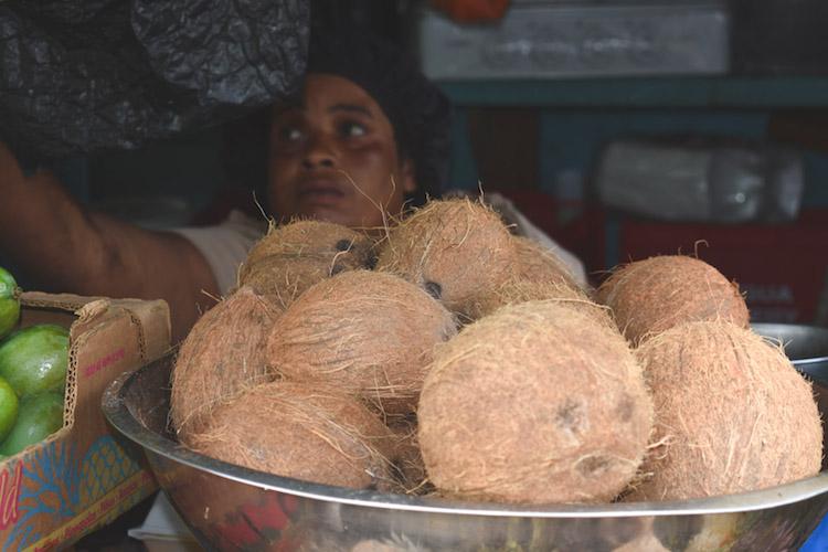 eiland antigua kokosnoten