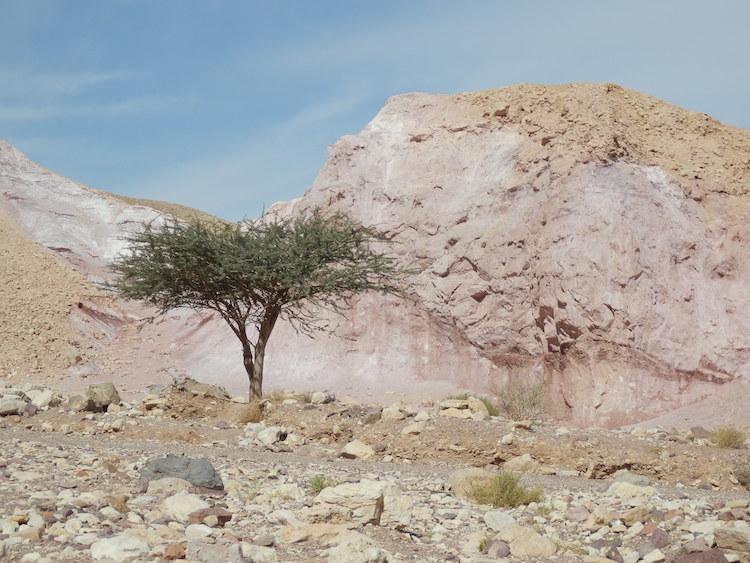 eilat-vakantie-route-naar-Red-canyon