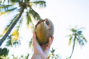 fiji eilanden eiland hoppen