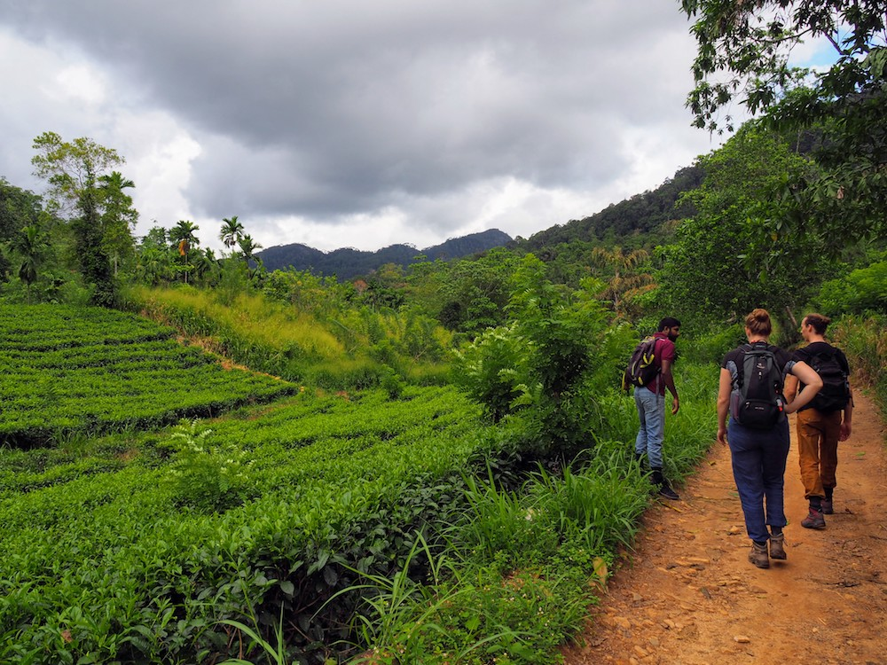 hidden places sri lanka Sinhraja wandeling