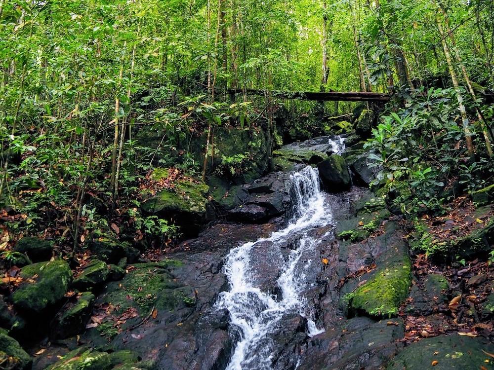 hidden places sri lanka Sinhraja waterval