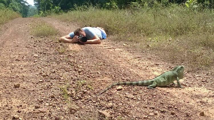 jungletocht suriname jungle foto's maken