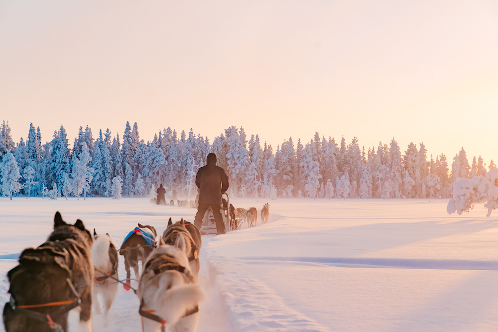 lapland travel tripje sneeuw