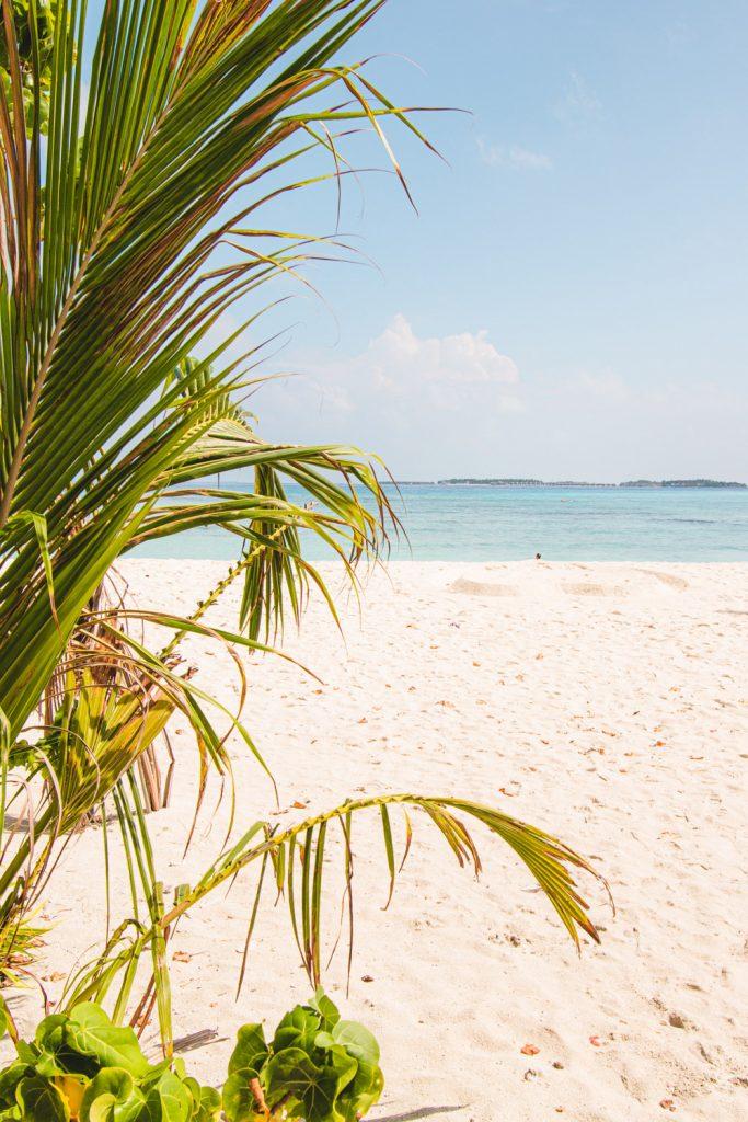 maafushi malediven eilandhoppen