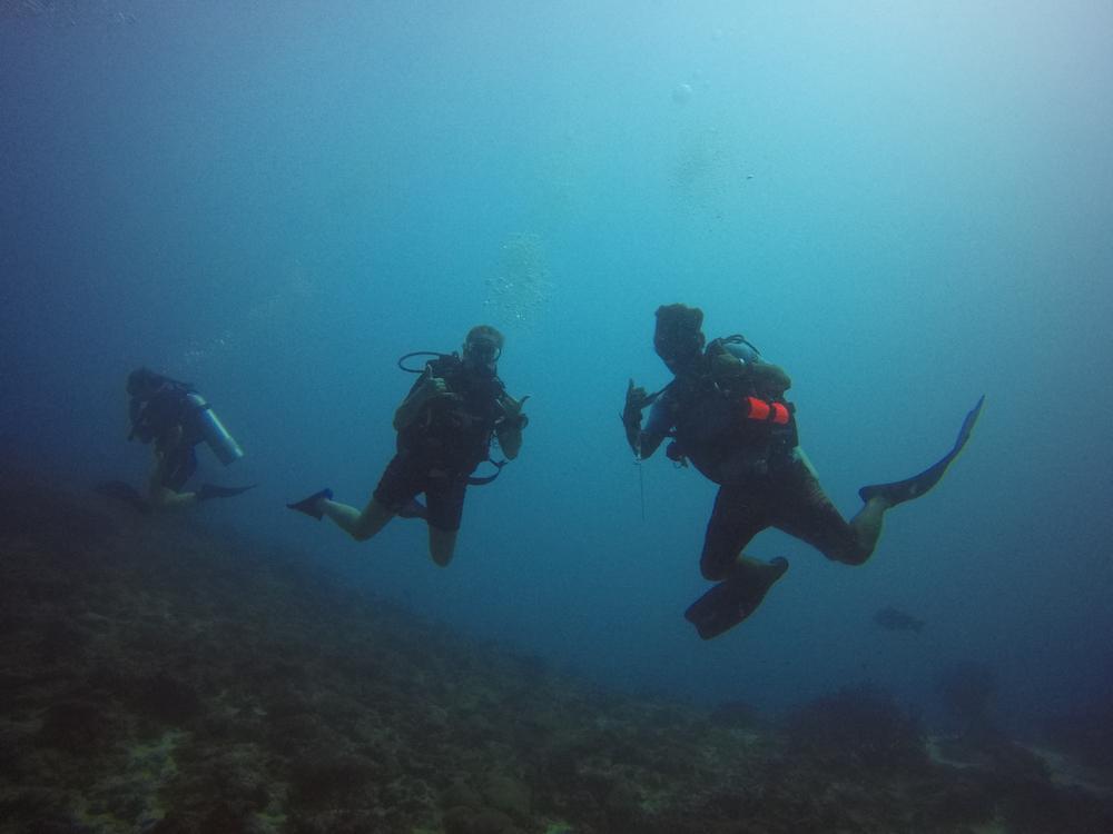 Malediven rashdoo onder water dive master maai