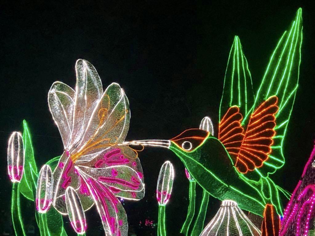 medellin colombia lichtjes festival