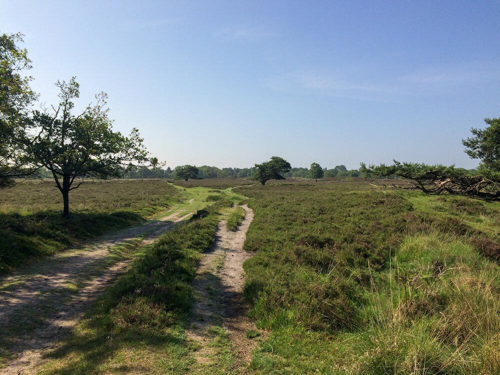 meerdaagse wandeltocht nederland PieterPad wandelen