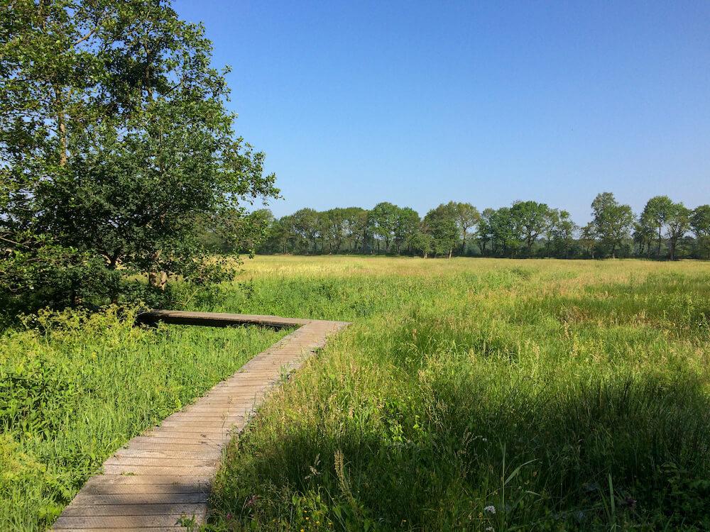 meerdaagse wandeltocht nederland PieterPad