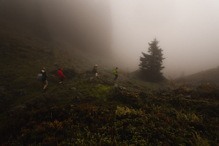 mist bos montafon wandelen