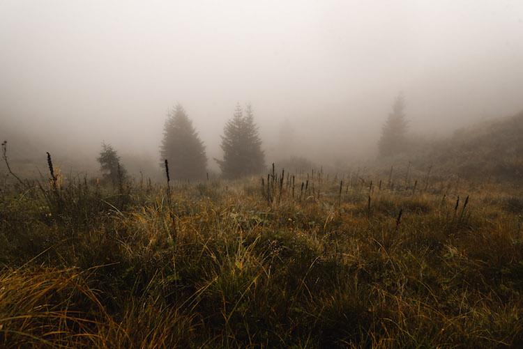 mist in montafon wandelen
