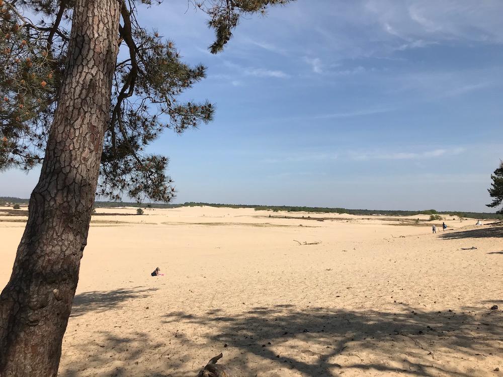 mooiste plekken in nederland Loonse en Drunense Duinen overzicht