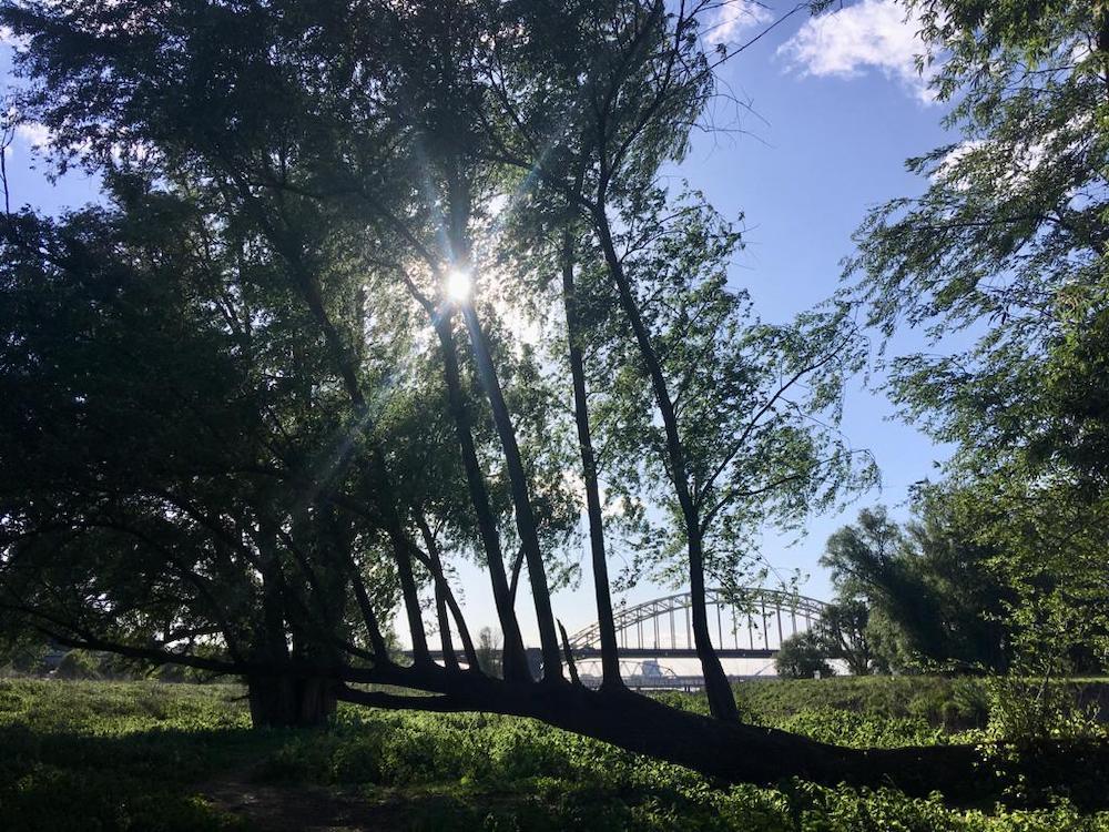 mooiste plekken nederland Nijmegen vanuit de Ooijpolder
