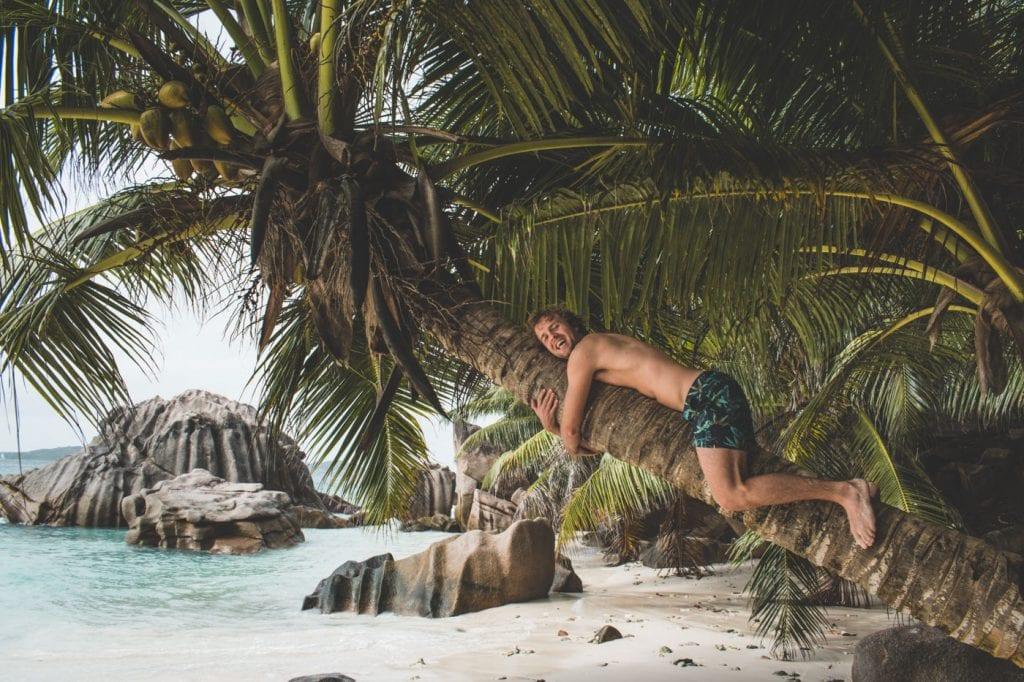 mooiste stranden la digue seychellen palmboom klimmen